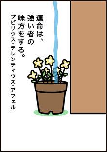 Manga31 P3