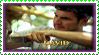 Stamp-David22