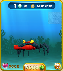 Rare Red Vampire Crab