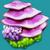 LIV Violet Plateau Plant