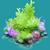 COR Christmas Tree Coral