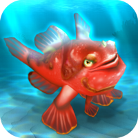 File:FISHR Red Clown Frogfish.png