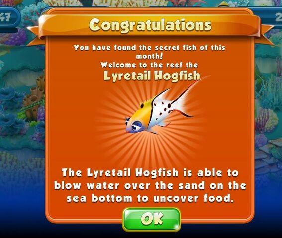 File:April-May--Lyretail Hogfish.jpg