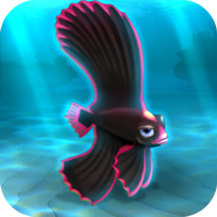 File:FISHR Pink Dusky Batfish.png