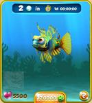 Yellow Mandarinfish