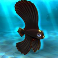 File:FISHR Black Dusky Batfish.png