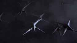 Fleet Of Basestars