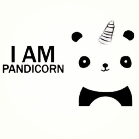 File:Pandicorn.jpg
