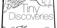 Tiny Discoveries