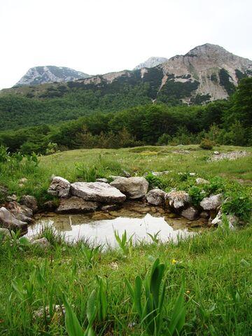 File:Bulino vrelo ispod vrhova Šatora - 23264332.jpg