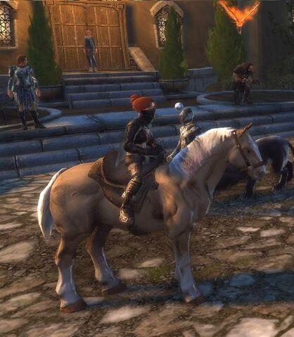 File:Palomino Horse.jpg