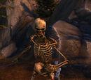 Decrepit Skeleton