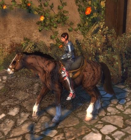 File:Sabino Horse.jpg