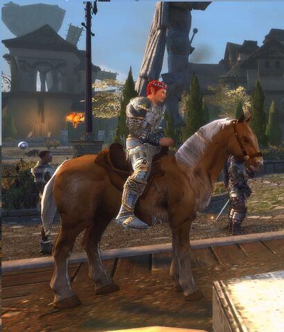 File:Brindle Horse.jpg
