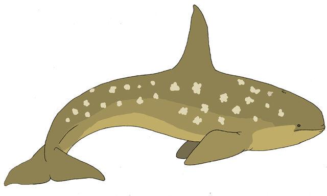 File:Alula Whale by Pristichampsus.jpg