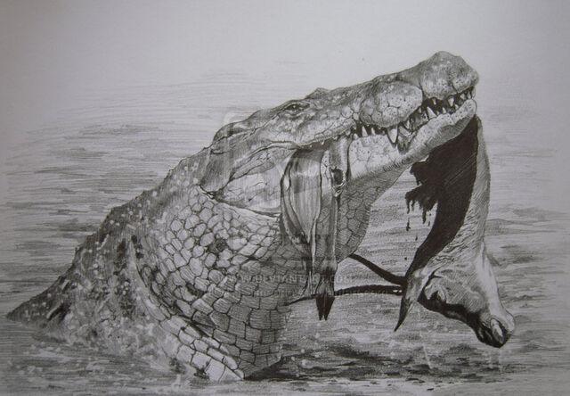 File:Nile crocodile by moth simeonov-d4g8zxq.jpg