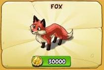 Fox new