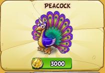 Peacock new