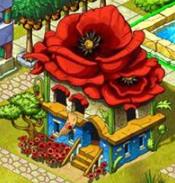 Poppy house v