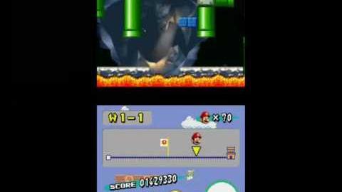 Newer Super Mario Bros. Wii - Level 1-Something?