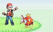 Spalsh Attack