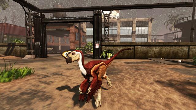 File:Oviraptor pic 2.jpg