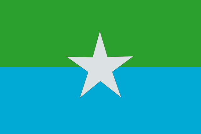 File:Reefs Flag.png
