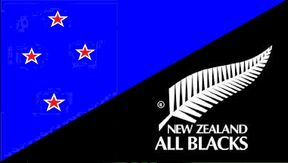 New Zealand All Blacks Flag - Heath Woodcock