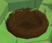 Degraded Nest