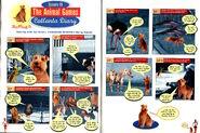 Zelda Van Gutters August 1996 Ruffing It Episode 18 Catlanta Diary