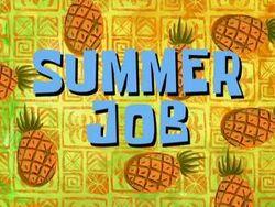 Summer-Job