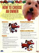 Zelda Van Gutters how to choose owner NickMag April May 1994