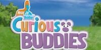 Curious Buddies
