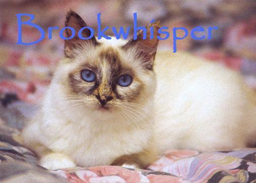 File:Brookwhisper.jpg