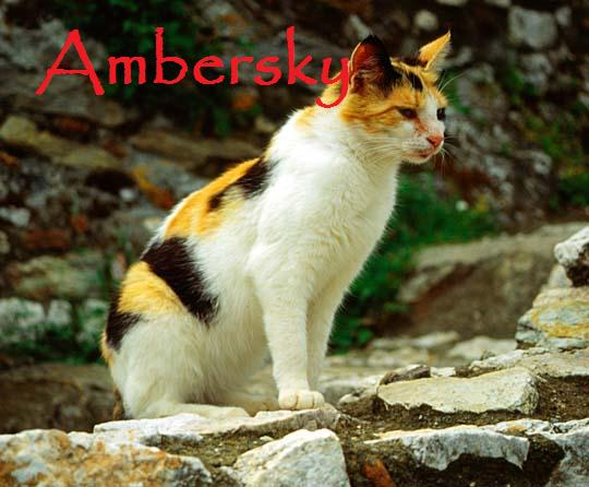 File:Ambersky.jpg