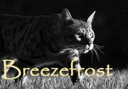 Breezefrost