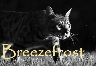 File:Breezefrost.jpg