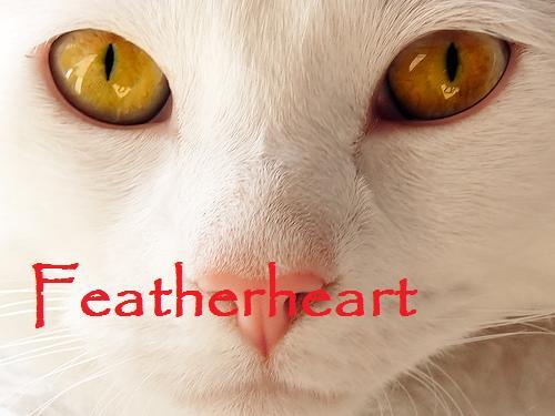 File:Featherheart.jpg