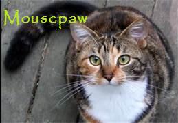 Moupaw