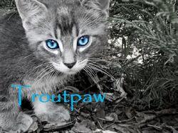 Troutpaw
