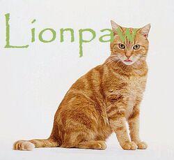 Lionpaw
