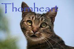 Thornheart