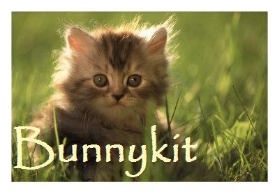 File:Bunnykit.jpg