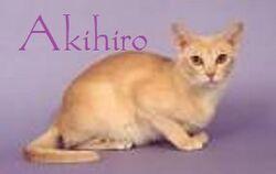 Akhiro
