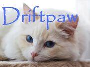 Driftpaw