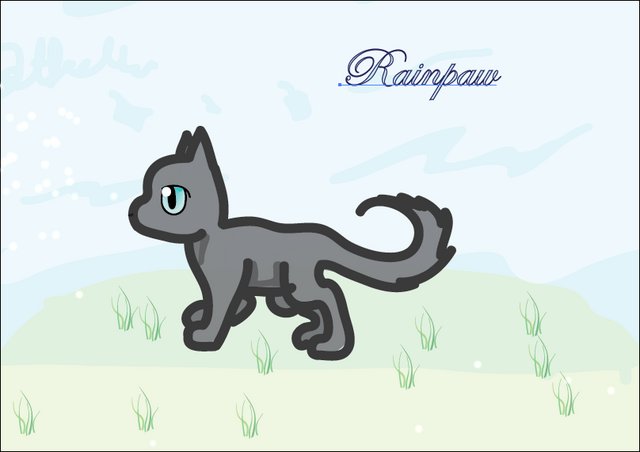 File:Rainpaw ~ By Jetfeather for Rainy.png