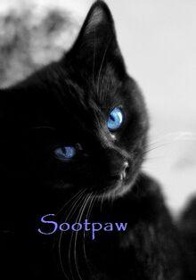 Sootpaw