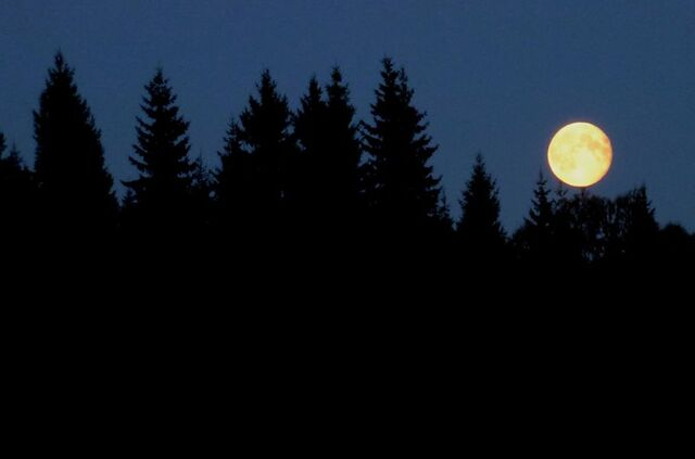 File:Sweden moon rise.jpg
