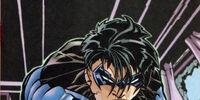 Nightwing's Escrima Sticks