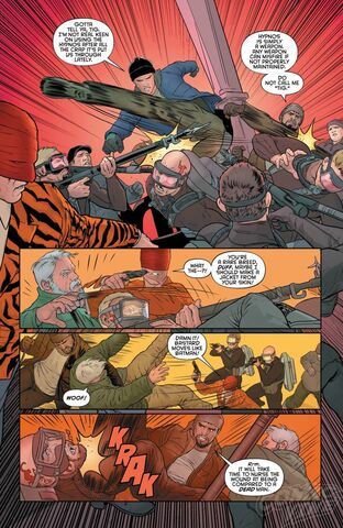 File:Grayson 13 Preview 005.jpg